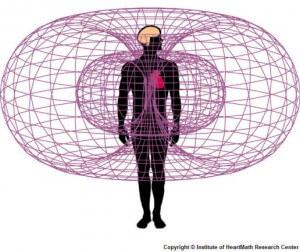 HeartMath-Electromagnetic hartcoherentie Oefentherapie Mensendieck Waves, beach & health center door Cathy Samé Lottin Zandvoort