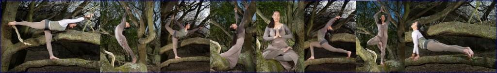 Patricia Ramaer Photography Tree yoga Cathy Same Lottin Waves, beach & health center Zandvoort boom yoga duinen